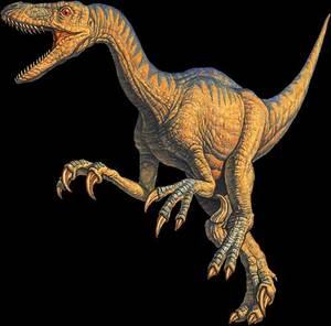 velociraptor_2